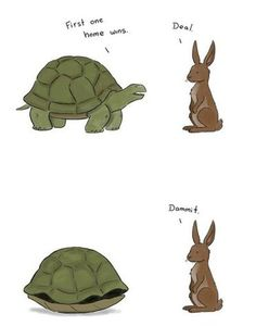 FUNNY....The Tortoise And The Hare