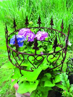 Details zu Edelrost Gartenstecker Zierlauch (Allium) Metall ...