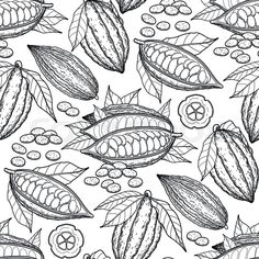 Stock vector of 'Graphic cocoa fruits. Coloring book page design for adults and kids' Cocoa Fruit, Fruit Pattern, Coloring Book Pages, Page Design, Exotic, Drawings, Bakery Ideas, Pharmacy, Prague
