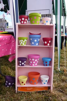 Plants pots bought to life in bright colours guaranteed to bring sunshine to any garden.