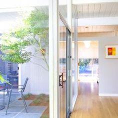 Eichler Atriums | Atrium Photo Gallery for Mid-Century Modern Eichler Homes,  Eichler Home,Marin Modern, Marin Modern Real Estate, Eichler For Sale, Modern Homes, Eichler Courtyards, glass house, Japanese maple tree