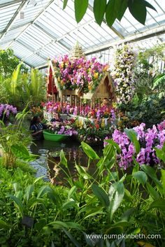 This golden, floating Palace was inspired by the Thai Palace of Bang Pa-In, it was especially created for the 2018 Orchid Festival. Pictured inside the Princess of Wales Conservatory, at the Royal Botanic Gardens, Kew. Botanical Art, Botanical Gardens, Water Dragon, Cymbidium Orchids, My Pool, Kew Gardens, Garden S, Installation Art, Beautiful Gardens