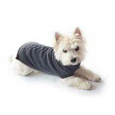 Dog's pullover Charles grey This fine cashmere pullover for small dogs is ideal for walking pets on cold days. Depending how cold it is the collar can be rolled up or down and an opening allows for connecting the lead to the dog's collar. The seams and edges of the dog's pullover add a smart optical touch. The back has a traditional cable stitch pattern.