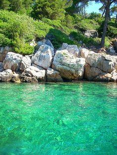 The dalmatian coast on Lokrum Island, near Dubrovnik, Croatia (by jesuscm).