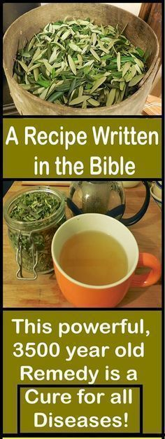 A Recipe Written in the Bible: This powerful, 3500 year old Remedy is a Cure for all Diseases MayaWebWorld #healthcare #healthyliving #diseases