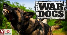 As of 2015, there were about 2,500 military working dogs serving in active duty, and today, war dogs are trained at the Lackland Air Force Base by the 341st Training Squadron. These dogs have many roles, including detection, tracking, fighting, scouting, and acting as sentries. They dedicate their lives to protecting their military handlers and accomplishing every task put before them. We at Low VA Rates are grateful for all of the hard work these dogs do in protecting our nation and our…
