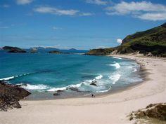 Ocean Beach - Whanga