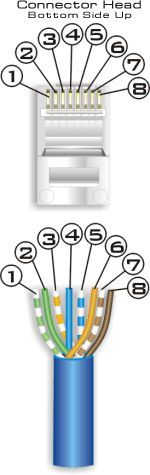Always helpful Cat 5 and Cat 6 wiring diagram. Parts are available at www.homecontrols.com