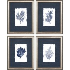 Deliver a fresh and elegant feature to highlight your decor with this four-piece framed giclee wall art set. Each frame measures wide x high x deep. Hang weight is 4 lbs. Four-piece framed giclee wall art set. Style # at Lamps Plus. All Wall, Frames On Wall, Metal Wall Art, Framed Wall Art, Wall Décor, Wood Molding, Coral Blue, Wall Art Sets, Picture Frames