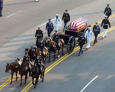 Ronald Regan's funeral procession. - A Caisson horse is one of the 6 horses that is hooked to the caisson which is the cart that holds the casket of a fallen and ranked soldier. Presidents Wives, Greatest Presidents, American Presidents, American History, American Pride, 40th President, President Ronald Reagan, Catholic Funeral, Funeral March