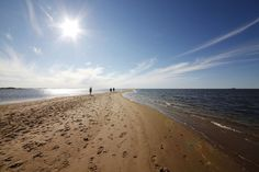 From city centre sauna paradises to remote rural finds, read our guide to visit the best beaches in Finland outside Helsinki. Finland Summer, Finland Travel, Helsinki, Places To See, The Good Place, Remote, The Outsiders, Nostalgia, Europe