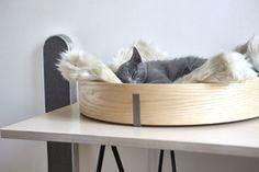 23 idéias de móveis com muito design e bom gosto para gatos