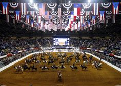 Image result for houston livestock show and rodeo
