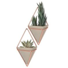 Umbra+Trigg+Wall+Vessel+Small+-+Copper+-+Set+of+2+-+Get+on+the+geometric+style+bandwagon+with+these+gorgeous+diamond-shaped+wall+planters! The+Umbra+Trigg+Wall+Vessel+Small+-+Copper+-+Set+of+2+comprise+two+concrete+resin+pots+hanging+from+copper+wire+frames,+which+can+be+used+as+plant+pots,+or+for+everyday+storage,+such+as+stationery+or+makeup+holders!+These+multi-purpose+wall+storage+vessels+are+both+aesthetically+pleasing+and+practical,+and+make+great+talking+points+in+your+interior…