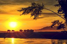 Paradise beach at sunset by bastera on @creativemarket