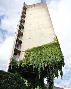 Architecture as a ruin, unkempt, naturalism vs brutalism, point counterpoint, juxtaposition. Architecture Design, Concrete Architecture, Green Architecture, Amazing Architecture, Landscape Architecture, Landscape Design, Natural Architecture, Concrete Facade, Building Architecture