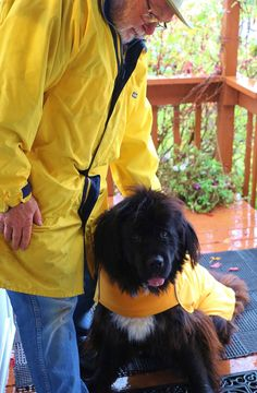 Yellow rain coat day on the River