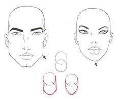 Diferencias: Hombre / Mujer - CARA Y CABEZA