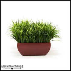 River Grass in Square Wooden Planter, 16 in. $138.85