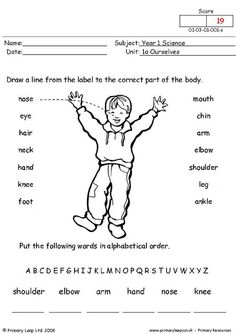 PrimaryLeap.co.uk - Parts of the body Worksheet