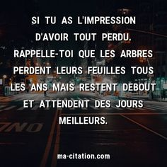 Citations Top, Love On Ice, Shinrin Yoku, Quote Citation, French Quotes, Top Quotes, Positive Attitude, Feel Good, Encouragement