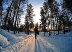 O que fazer em Rovaniemi Aurora Boreal