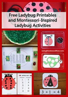 Free Ladybug Printables and Montessori-Inspired Ladybug Activities (Links to LOTS of Free Ladybug Printables)