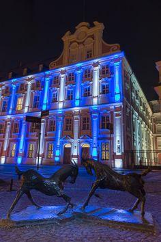 Poznan Poland, #93Lecha [fot. Philips Polska]