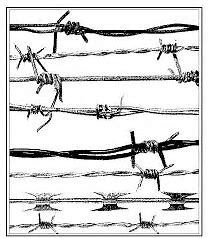 Image result for Barbed Wire Drawings Barbed Wire Drawing, Barbed Wire Tattoos, Barbed Wire Art, Ap Art Concentration, Criminal Tattoo, Pyrography Patterns, Wood Burning Patterns, Rustic Art, Celtic Tattoos