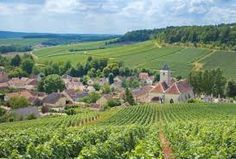 french countryside - Google Search French Countryside, Photo Reference, Vineyard, Outdoor, Google Search, Photos, Outdoors, Vineyard Vines, The Great Outdoors