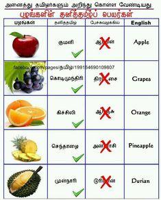 my tamil fruit name