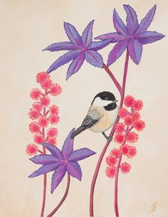 Bird Art Botanical Print Black Capped Chickadee by SummerHour, $20.00