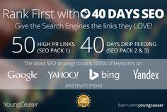 rank you First in Google, 50 PR10 Niche Backlinks