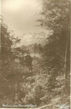 """Photograph of the north shore mountains, including the Lions, taken from Robert Burnaby Park"". Photo taken circa 1926 by Lloyd Studio, courtesy the Burnaby Archives."