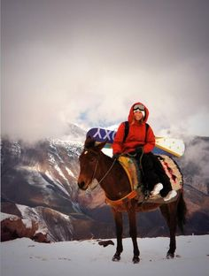 Torah Bright. Snowboarding in Africa-2009! Donkeys were our mode of transportation to the mountain. Morocco