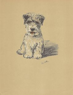 TERRIER Dog Print 1930s Lucy Dawson Antique by HucksterHaven, $17.00