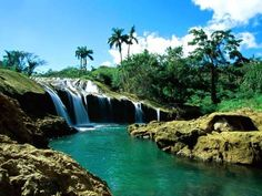 El Nicho watervallen Cuba  http://www.naturescanner.nl/midden-amerika/cuba