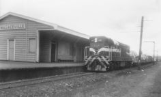 New Zealand Railways Da-class diesel-electric locomotive No. 1451 with goods train, Wallaceville station - July at Upper Hutt City Library City Library, Electric Locomotive, Train Station, Over The Years, New Zealand, Trains, Diesel, History, World