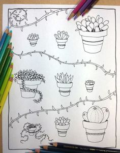 Succulent Coloring Book Page By FairytaleFoxDesigns