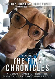 Amazon.com : awesome dog Book Club Books, Books To Read, American Legion Post, First Year, Great Books, Dog Mom, Animal Rescue, Best Dogs, Audio Books