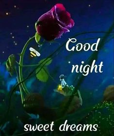 Good Night Images For Whatsapp Good Night Friends Images, Funny Good Night Images, Funny Good Night Quotes, Good Night Love Messages, Good Night Thoughts, Photos Of Good Night, Good Night I Love You, Good Morning Images Hd, Good Night Greetings