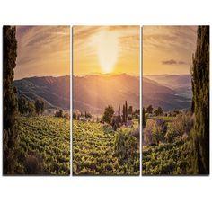 DesignArt Vine Farm at Sunset Tuscany Panorama - 3 Piece Graphic Art on Wrapped Canvas Set