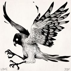 Red Tailed Hawk Print A selection of bird photos Animal Sketches, Animal Drawings, Drawing Sketches, Art Drawings, Hawk Tattoo, Really Cool Drawings, Eagle Drawing, Petit Tattoo, Arte Horror