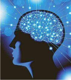 El cerebro humano, la gran caja negra. http://www.farmaciafrancesa.com