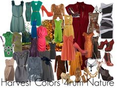 Harvest colors, created by shaley1 on Polyvore