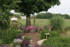 Country Garden Ideas @ www.smithscountrygardens.com Will Smith, Beautiful Gardens, Garden Ideas, Country, Green, Plants, Rural Area, Landscaping Ideas, Country Music