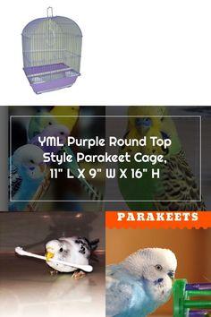 YML Purple Round Top Style Parakeet Cage 11 L X 9 W X 16 H 11 IN Parakeet Cage, Cages For Sale, Round Top, Popular Pins, Dinosaur Stuffed Animal, Parakeets, Purple, Animals, Tops
