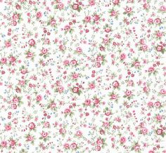 """Wallpaper Remnant (20.5""""W x 26"""") - Abby Rose Floral Trail -Vintage Look, Shabby Cottage, Chic Country, French - End Of Roll - AB31089"""