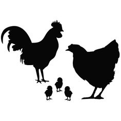 Koop buy 3 free Hot Sale Laptops/luggage Stickers Lovely Chicken Family Vinyl Car Styling Farm Animal Decals Car Stickers Black/Silver/Red/White bij Wish - winkelen is leuk. Luggage Stickers, Car Stickers, Car Decals, Vinyl Decals, Family Stickers, Animal Silhouette, Silhouette Cameo, Silhouette Portrait, Chicken Painting