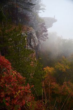 Hawksbill Crag, Whitaker Point, Upper Buffalo Wilderness, Arkansas; photo by .Jeff Rose
